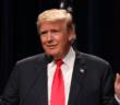 trump-scandal-limbaugh